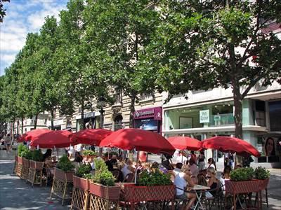 LAvenue des Champs-elysee2_R.jpg
