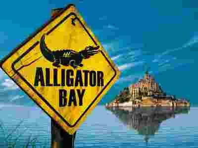 alligator_R.jpg